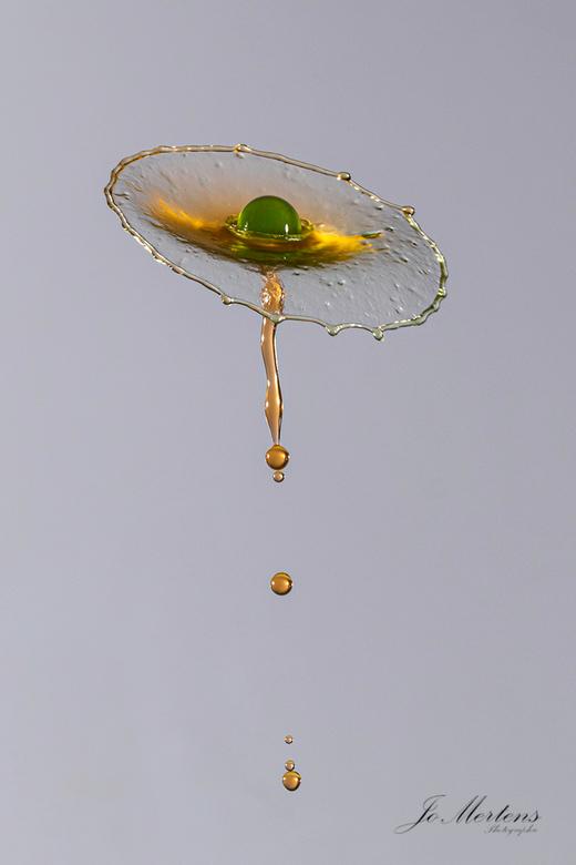 druppelfoto (bloem van water) - 4 druppels doen  dat maken  2 druppels van boven naar beneden  en 2 van beneden naar boven