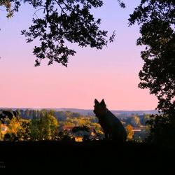 Een mooie zonsondergang in HoogElten.