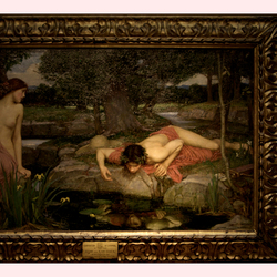 Echo en Narcissus