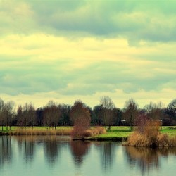 Landschap....
