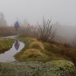 Wandeling in de mist.