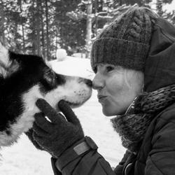 Kissing a Huskey
