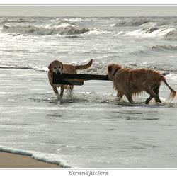 De strandjutters