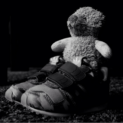 Teddy and his new Adidas