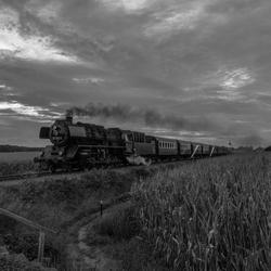 VSM 50-3654 Summer-Night-Express