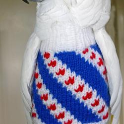 Mijn Witkuifkaketoe Maxi draagt haar Friesland-trui. 9 augustus 2017