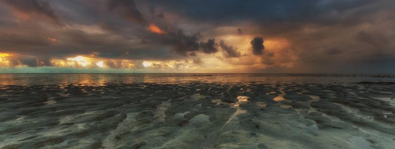 Over de Dijk - Maar kom je dan toch over de dijk, dan ligt de wereld voor je open. Een prachtige natuur: de Waddenzee.