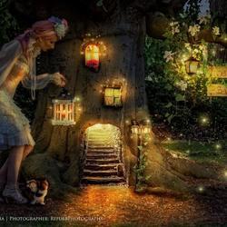 Refurb Photography - Fantasy inside nature