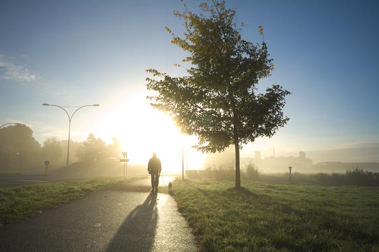 vroeg zonlicht -