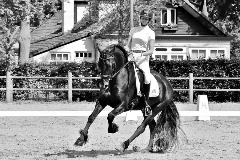 Dressuurwedstrijd - Vriendin en haar paard op wedstrijd.