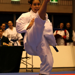 Dutch Open Karate