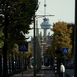 Rotterdam, lijn 4