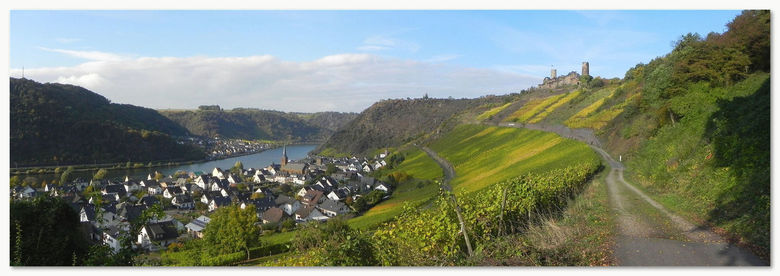 Herbst am Mosel 3