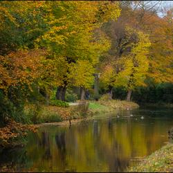 Herfst bij Landgoed  Elswout