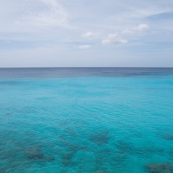 2014 Oktober Curacao - Grote Knip _DSC4634