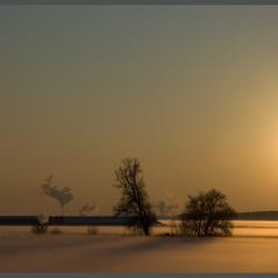 mist in de winterse polder