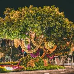 Versiering voor kroningsdag Thailand Bangkok