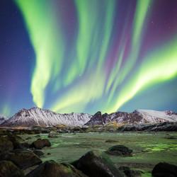Aurora -noorderlicht Lofoten Noorwegen