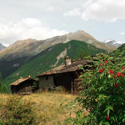houten huizen in de bergen van Zwitserland