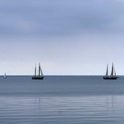 De Bruine vloot op het IJsselmeer