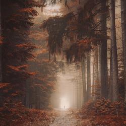 Mystique pines