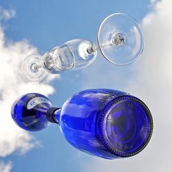fles en glas