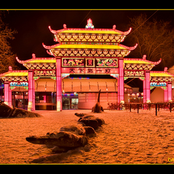China lights DRI