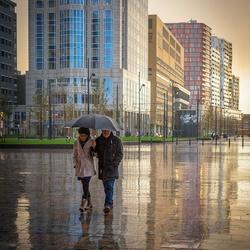 Rotterdam rain