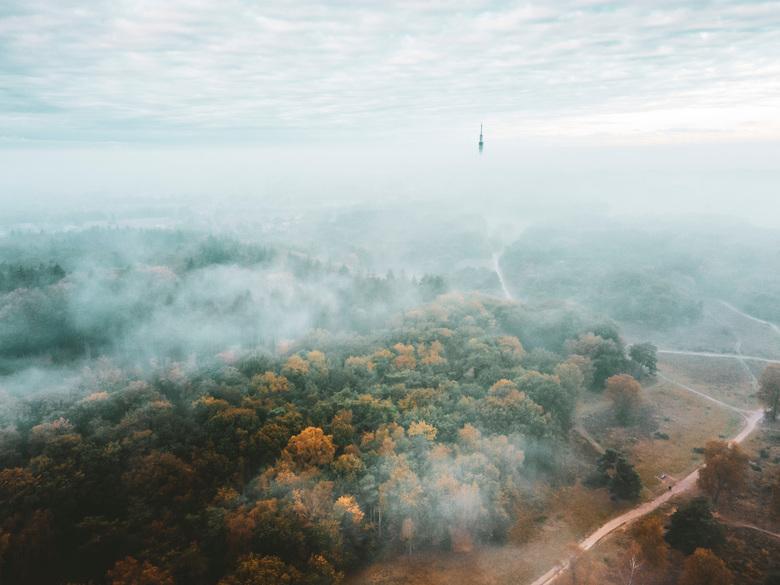 herfstkleuren - de westerheide in de ochtendmist