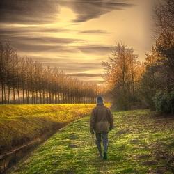 wandelaar
