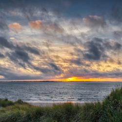 De duinen van Voorne