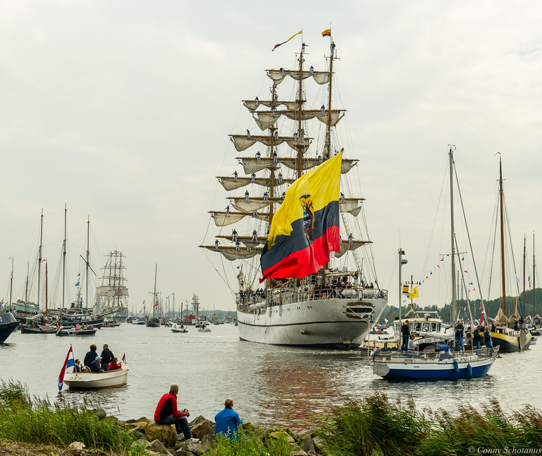 Sail In 2015