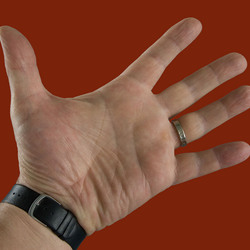 Handpalm