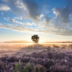 't Is al zolang grijs... Tijd voor een zonsopkomst bij Hilversum uit september