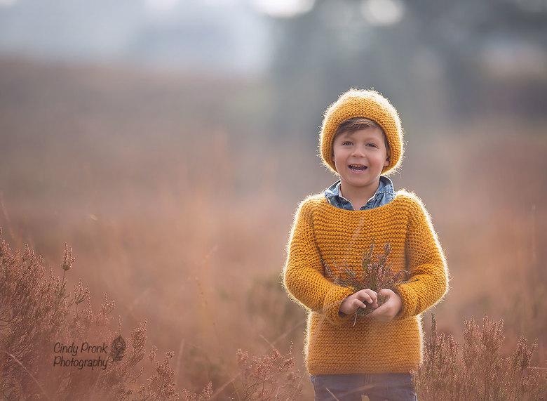 Autumn rim light -