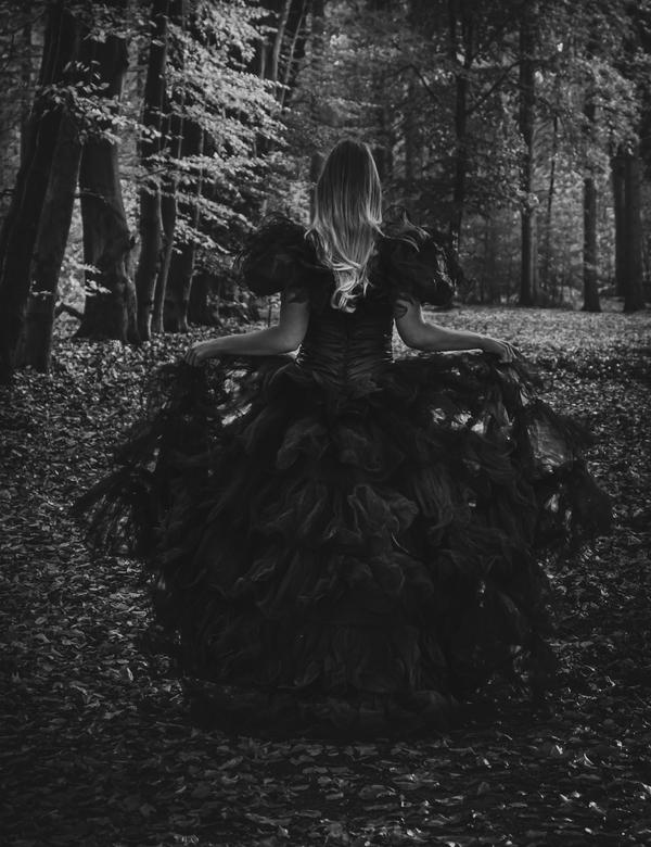Dark princess -