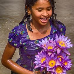 versgeplukte lotusbloemen