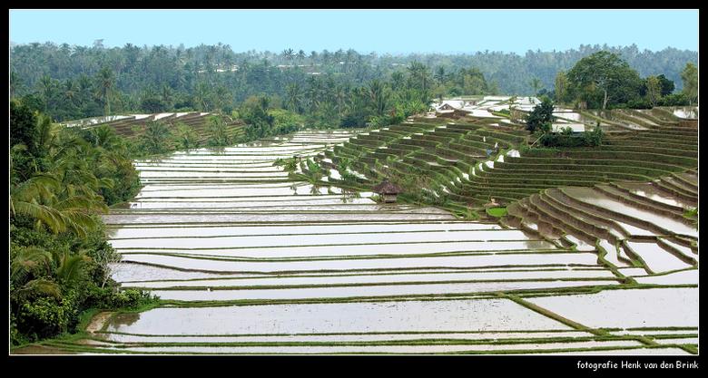Indonesie 07 -