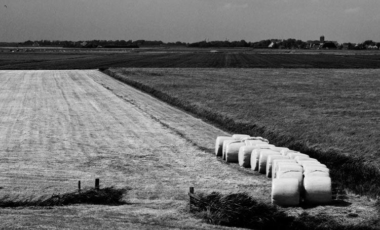 Texel is mooi - Vier dagen in Texel geweest voor mijn verjaardag Veel te veel wind en zondag k.. weer.