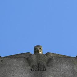 De Kathedraal... (8)