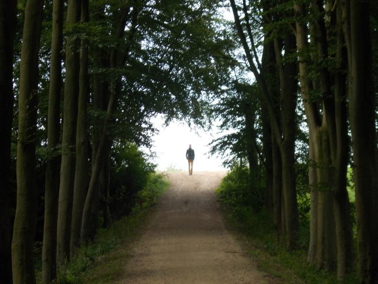 The road of youre life - Komt er licht in mijn donkere bestaan?