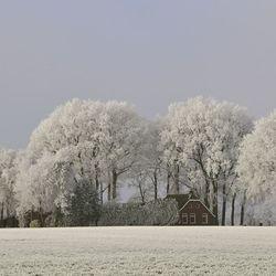 Het wordt weer winter