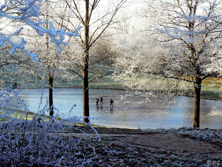 Crystal White 6 - 22 december Hoogeveen<br /> <br /> Een witte wereld met zon waarin elk klein takje bedekt is met een dun laagje kristalvorming.<br
