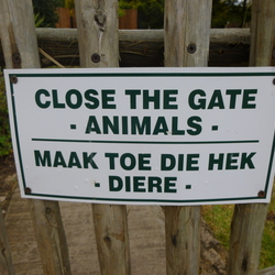 Zuid-Afrikaans hek