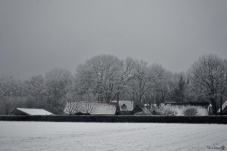Hartje winter. - Goed koud vanmorgen.