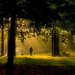 Muuelcreek Parc