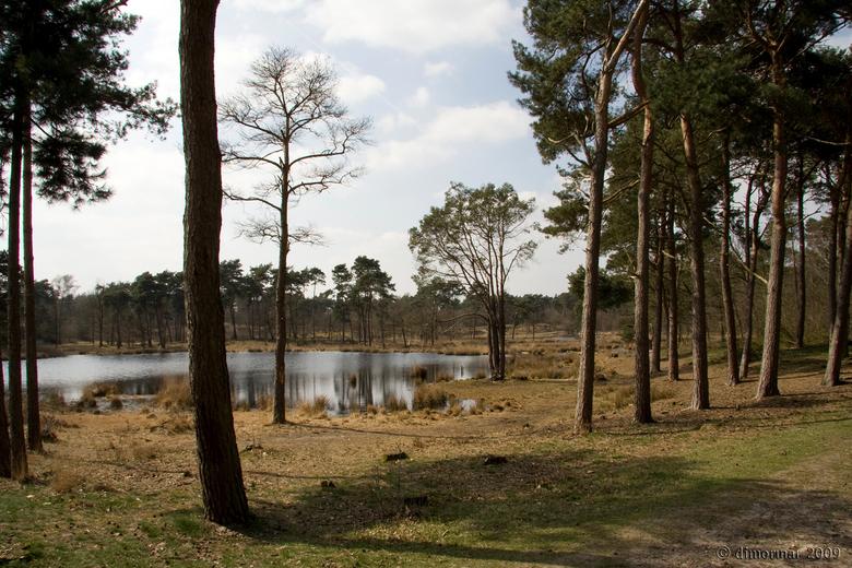 Hatertse Vennen - Nog maar eens een foto van de Hatertse en Overasseltse Vennen.<br /> <br /> Een prachtig natuurgebied in de buurt van Nijmegen.<br