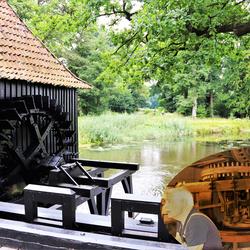 Noordmolen op Landgoed Twickel in Delden