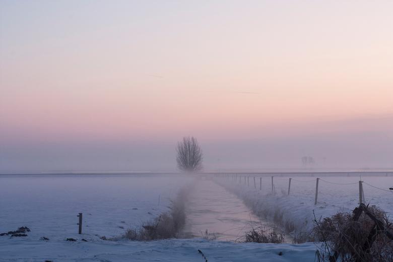 mistige ochtend - -10 buiten, ga maar eens fotograferen..<br /> uiteindelijk is dit m&#039;n mooiste van de ochtend