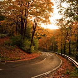 Eifel_autumn colors.jpg